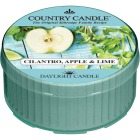 Kringle Candle Cilantro, Apple & Lime Daylight Candle Image 1